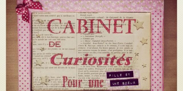 Le cabinet de curiosit s girly le magasin de mots graine de carrosse - Le cabinet de curiosites ...